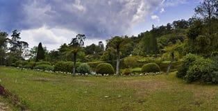 Botanical Garden - Vumba, Zimbabwe. Wide angle, multi-frame composition, of the lake area of, Vumba Botanical Gardens, Mutare, Zimbabwe Stock Photography