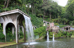 Botanical Garden. Waterfall and fountains in the Botanical garden. Island Madeira stock photos