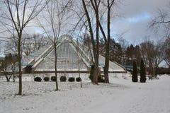 Botanical Garden. Winter stock image