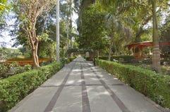 Botanical gardens at Aswan in Egypt Royalty Free Stock Images