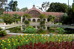 Botanical gardens at Balboa Park royalty free stock photos