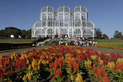 Botanical Gardens Curitiba. The orange and red flowered gardens of botanical gardens and the steel structure of the modern architecture of the glass and steel Royalty Free Stock Photography