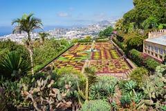 Botanical Gardens Madeira Stock Photo