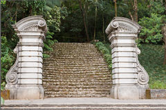 Botanical Gardens Sao Paulo Royalty Free Stock Images