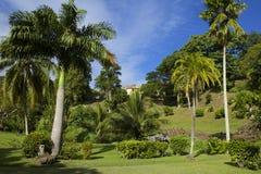Botanical gardens, Scarborough, Tobago Royalty Free Stock Photo