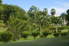 Botanical gardens, Scarborough, Tobago Stock Photo