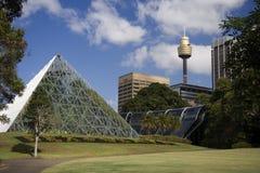 Botanical Gardens - Sydney - Australia Stock Photo
