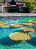 Botanical Gardens Villa Taranto Italy Royalty Free Stock Photo