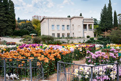Botanical Gardens, Yalta Stock Photo