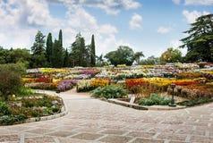 Botanical Gardens, Yalta Stock Photos