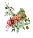 Botanical illustration. Bouquet of flowers. Hand drawn watercolor illustration Royalty Free Stock Image