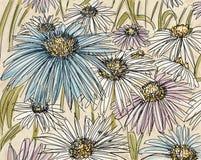 Daisies,botanical illustration with flowers and leaves, floral decoration. Botanical illustration with flowers and leaves, floral decoration Stock Image
