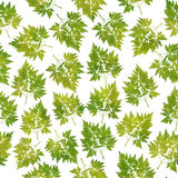 Botanical leaves seamless pattern,green, textile design,  on white. Background Stock Photos