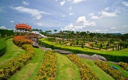 Botanical park Stock Image