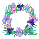 Botanical pink and violet iris wreath vector. Art Stock Images