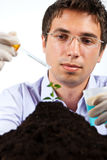 Botanical researcher. Researcher working in laboratory ,he holding a pipette and jar with blue chemicals,check also my collection Scientists people Stock Images