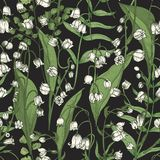 Botanical seamless pattern with beautiful blooming Lily of the valley flowers on black background. Natural backdrop with. Meadow flowering plant. Realistic vector illustration