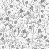 Botanical seamless pattern with clover on white background. Wild herbaceous plant with flowers, stems and trifoliate Royalty Free Stock Images