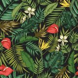 Botanical seamless pattern with foliage of exotic jungle plants on black background. Backdrop with leaves of tropical. Palm trees. Vector illustration for stock illustration