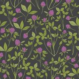 Botanical seamless pattern with red clover on dark background. Wild herbaceous plant with pink flowers, green stems and Royalty Free Stock Photos