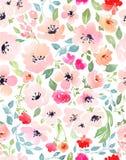 Botanical seamless pattern Royalty Free Stock Photography