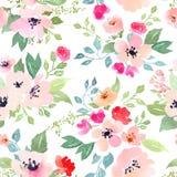 Botanical seamless pattern Stock Image