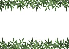 Summer botanical watercolor banner design. Delicate green leaves. Natural card or frame. Floristic borders. Place for