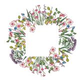 Botanical watercolor illustration of wildflowers frame. vector illustration