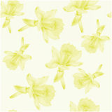 Botanical watercolor illustration of yellow narcissus on light background. Seamless pattern Stock Photography