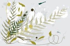 Botanicals e libellule Immagine Stock Libera da Diritti