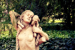 Botanico Карлос Thays Jardin Стоковое фото RF