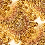 Botaniczny abstrakt Zdjęcia Stock