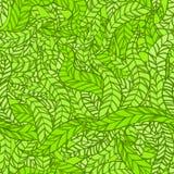 Botaniczny bezszwowy Obraz Stock