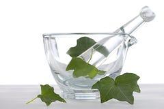 Botaniczny .heath-care - bluszcza liścia istotny olej zdjęcie royalty free