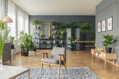 Botaniczny, przestronny żywy izbowy wnętrze, zdjęcia stock