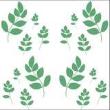 botaniczny tło wektor Zdjęcie Stock