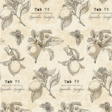 Botaniczny wzór w rocznika stylu z cytryny gałąź Fotografia Stock