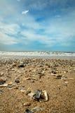 Botaniki zatoki plaża Obraz Stock