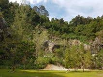 Botanique - naturel Images stock