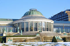 Botanique parc in winter Royalty Free Stock Photography