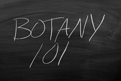 Botanique sur un tableau noir Image libre de droits