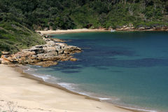 botanique Sydney arénacé de plage de compartiment de l'australie Photos libres de droits