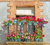 Botanisch Balkon Royalty-vrije Stock Afbeeldingen