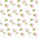 Botanisch bloemen naadloos patroon Vectorbloemdruk Stock Fotografie