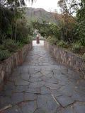 Botanisch park royalty-vrije stock foto