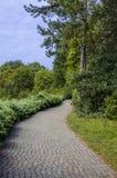 Botanisch park met een reeks bomen royalty-vrije stock afbeelding