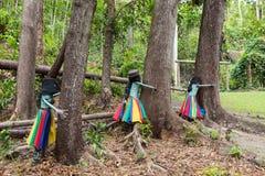 Botanisch Park - Tuin van Slaapreus, Nadi, Fiji royalty-vrije stock afbeelding