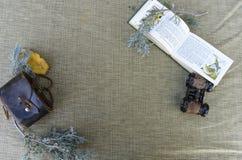 Botanisch stilleven van installaties met uitstekende verrekijkers royalty-vrije stock afbeelding