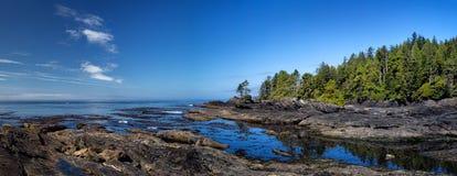 Botanisch strand stock afbeeldingen