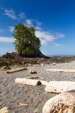 Botanisch strand royalty-vrije stock afbeeldingen